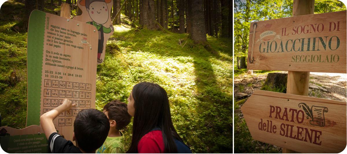 parco tematico e percorso didattico nel bosco legno